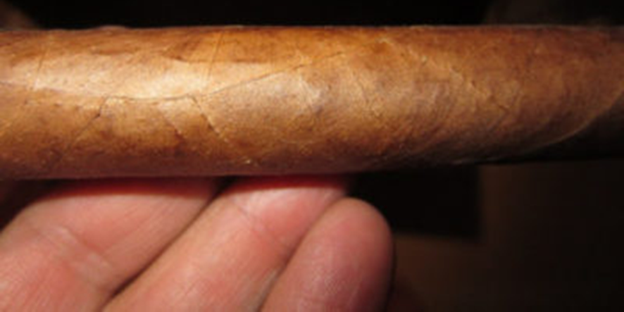 Of Cigar Tasting - The Raw Cigar