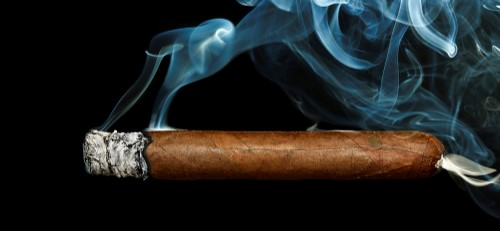 Of Cigar Tasting - The Lit Cigar Appreciation