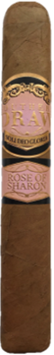 SOUTHERN DRAW ROSE OF SHARON ROBUSTO