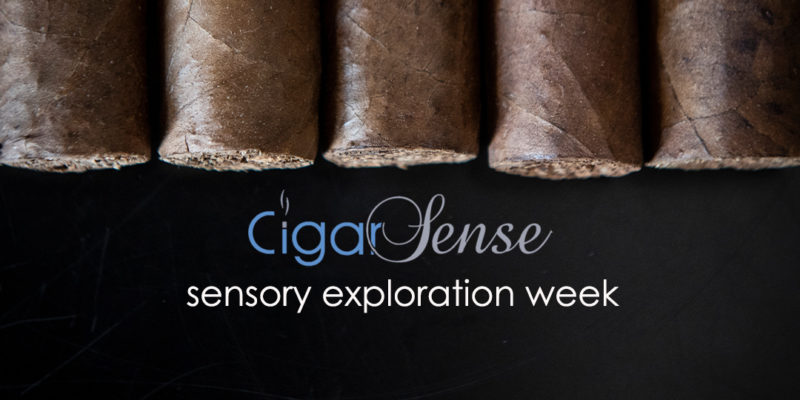 Join our Cigar Sensory Exploration Week!