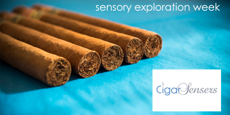 Cigar Sensory Exploration Week – Retrospective