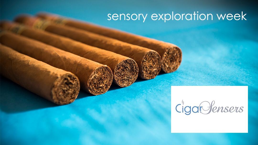 Cigar Sensory Exploration Week – Retrospective