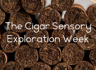 Cigar Sensory Exploration Week - How it works