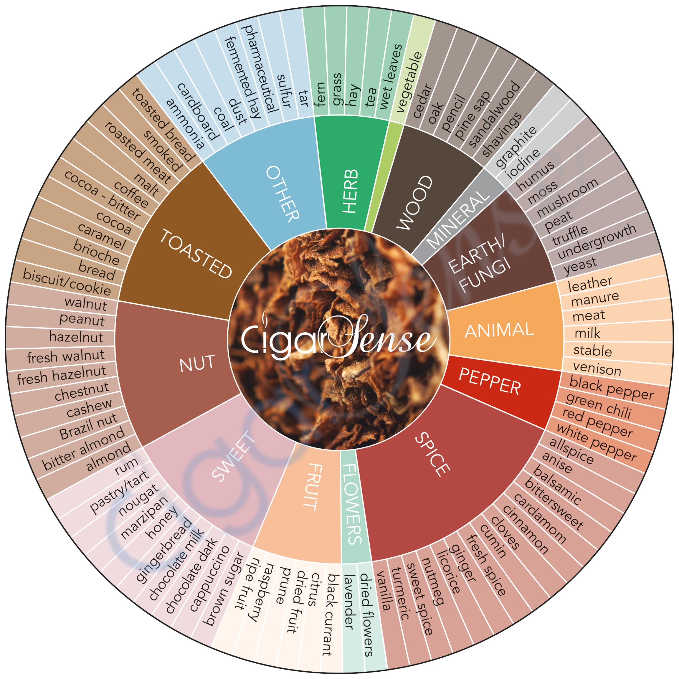 The Cigar Sense Aromas Wheel